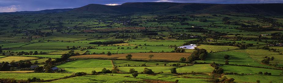 RV Landscape